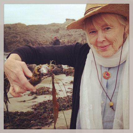 mom.seaweed