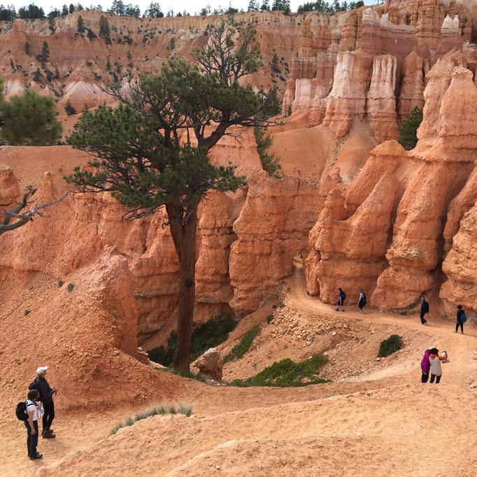 bryce.hike-down