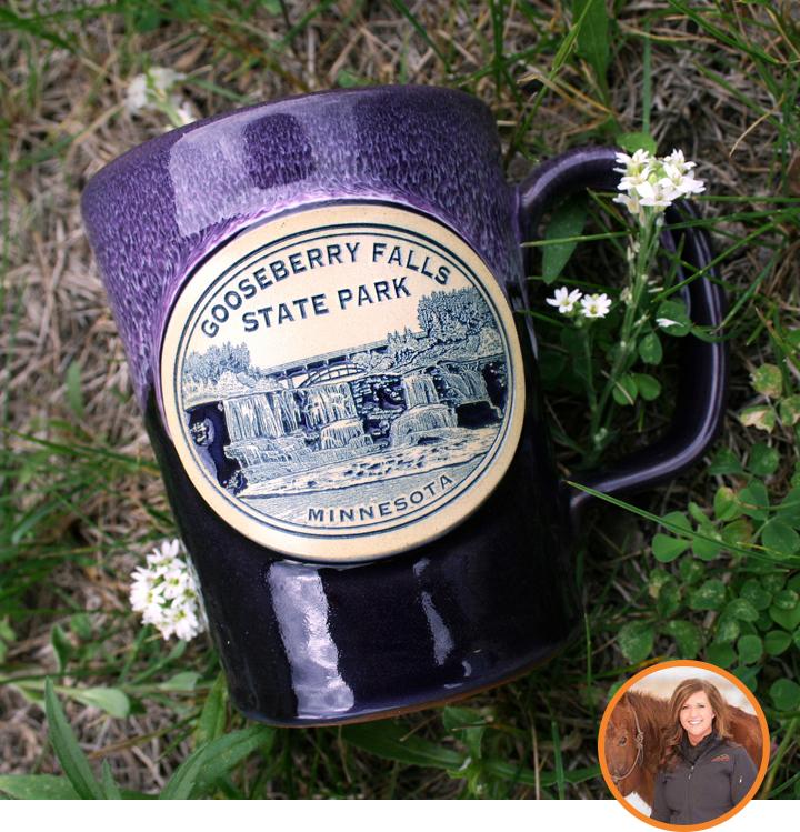 Gooseberry Falls State Park Mugs