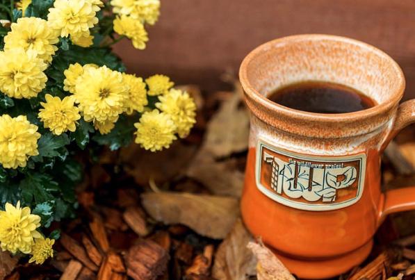 Deneen Pottery Wildflower Project